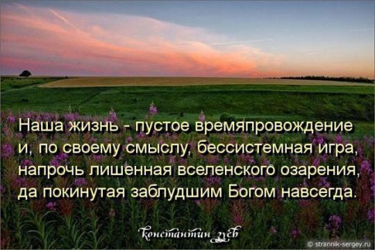 Зуев Константин Николаевич.РАЗМЫШЛЕНИЯ О СВОБОДЕ...